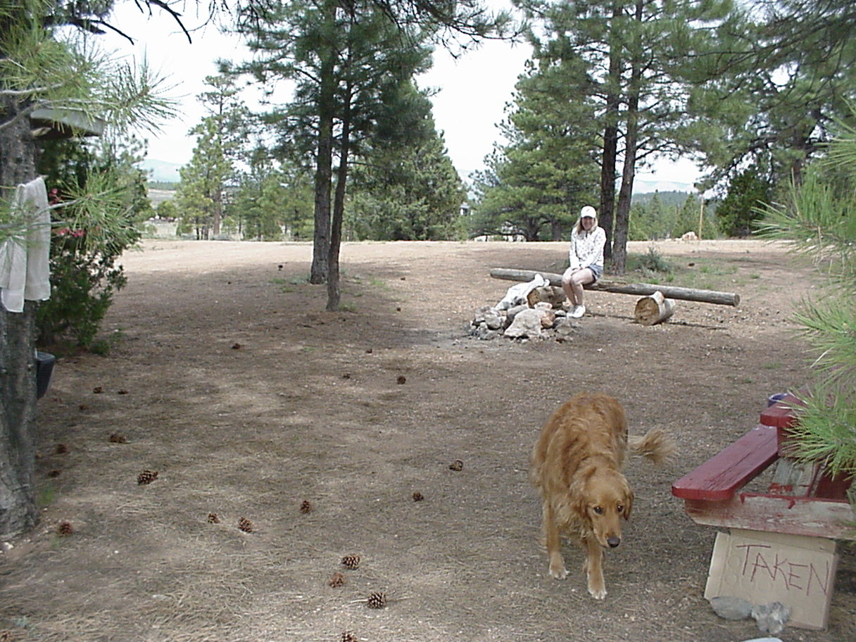 Bryce Canyon Pines RV Park and Campground m